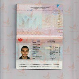 Fake austrian passports