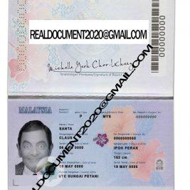 Buy Malaysian Passport New