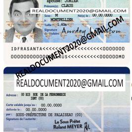Fake French ID Card